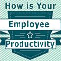 Employee Productivity Survey